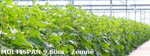 fóliovník MULTISPAN, Zemné, hydroponické pestovanie