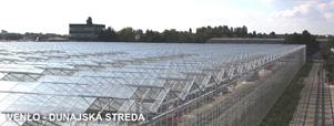 skleník VENLO dunajská streda